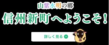 山紫水明の郷 信州新町へようこそ!
