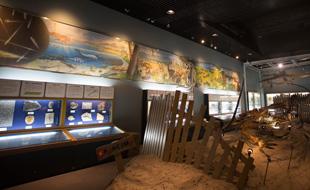 信州新町化石博物館
